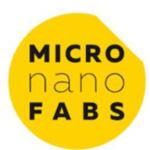 Logo micro nano fabs